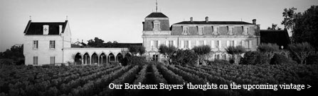 Bordeaux Blog